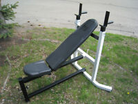 NORTHERN LIGHTS HEAVY-DUTY INCLINE/FLAT/DIP STATION BENCH with