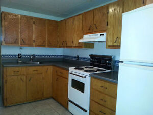 2 bedroom basement apartment located in Sydney river.