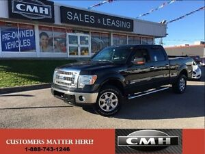 2013 Ford F-150 LARGE PICK-UP