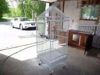 Grosse cage a perroquet
