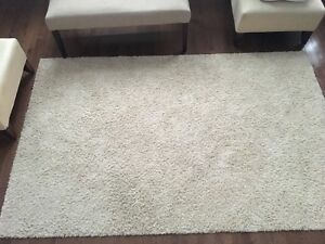 Beige Rug for Sale!