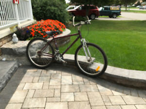 Mountain bike bicycle Millennium 21 speed Oshawa