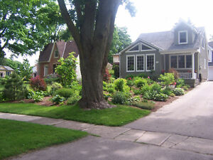Charming Home & Property with B&B Potential