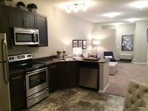 February Possession Available - Affordable Bungalow Strathcona County Edmonton Area image 9