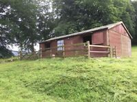 Stables and field for rent