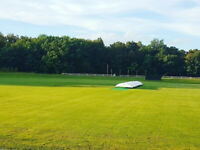 Eagles Cricket Club - Canada's Largest Cricket Club