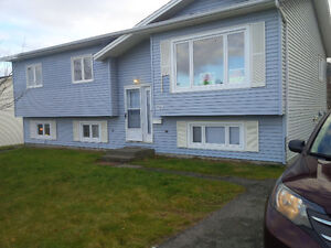 LARGE 3 BEDROOM COZY FAMILY HOME ON NL DRIVE