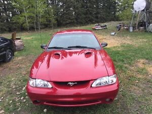 1996 Ford Mustang Cobra Coupe (2 door)