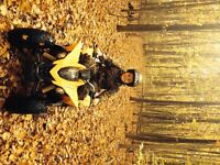 2012 Can Am DS 90 cc youth ATV - bought new in fall 2013