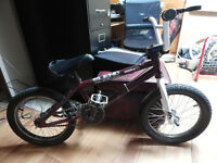 16 inch tire bmx bike with 3 piece cranks.. good for racing