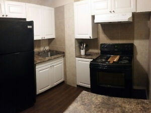 Nicely Rennovated, Centrally Located and Fully Furnished Regina Regina Area image 4