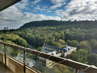 Splendid 3 1/2 heart of Plateau, AMAZING view of Mont Royal