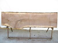 Live Edge Slab Wood for sale - Various Species