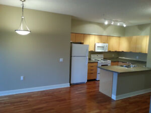 Beautiful Two Beds & Two Baths Condo Available July 1st (Uptown