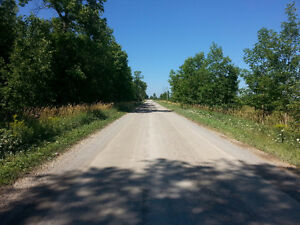 What? Only 39K for One Acre Residential Building Lot? Kawartha Lakes Peterborough Area image 5