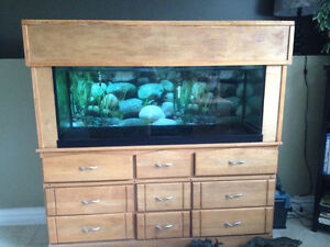 77 Gallon fish tank