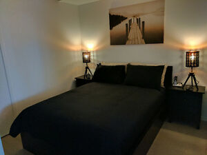 UP-SCALE DOWNTOWN TORONTO EXECUTIVE LUXURY FURNISHED CONDOS!!!