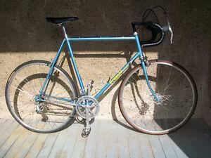 Freschi Supreme Road bike