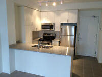 Wonderful Brand New 1 Bedroom + Den Treviso Condo Suite For Rent