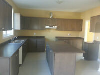 Brand New/Unused Solid Maple kitchen for sale
