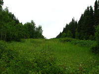 LAND FOR SALE GASPE QUEBEC
