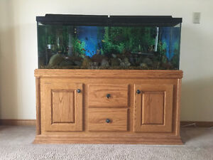 custom-built wooden fish tank stand and 50 gallon tank Windsor Region Ontario image 1