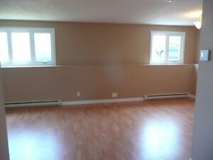 Bright, spacious open concept 2 bedroom basement apt in Kilbride