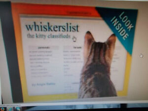 WANTED THIS CAT BOOK BY ANGIE BAILEY