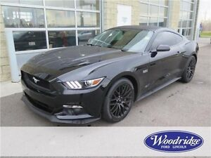 2015 Ford Mustang GT PRICE REDUCED! MAN, BACKUP CAM, LOW KMS