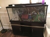 55 gallon aquarium with everything included