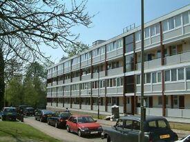 5 bedroom flat in Ibsley Gardens, London, SW1
