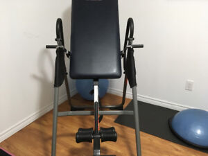 Life Gear Inversion Table.