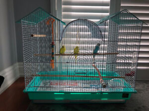 Large Bird Cage aswell as 1 Male Budgie and 2 Female Budgies