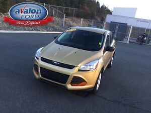 2014 Ford Escape S St. John's Newfoundland image 4