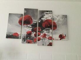 Poppy canvases