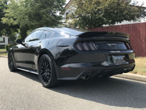 2015 Mustang GT Premium w/ Performance Pack + Upgrades