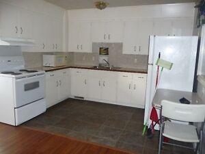 Unique Apartment Located Just Outside White City Regina Regina Area image 7