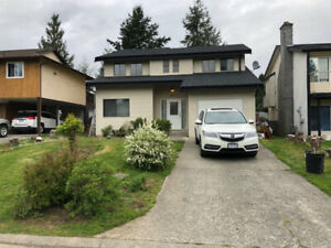 House in Central Abbotsford available for rent