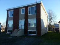 Triplex - Great Income Property - Many New Renovations
