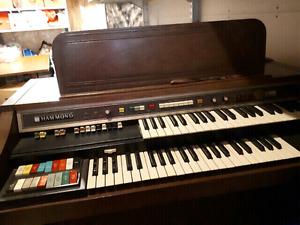 Free to loving home-Hammond Organ
