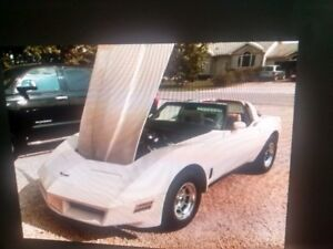 1980 corvette  an  binder of almost everything that's been done