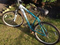 Apollo ladies bike
