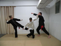 LOOKING FOR MARTIAL ARTS TRAINING?