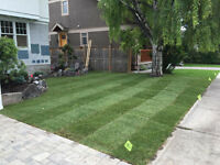 Sod Install Calgary Free Quotations Recommended Installer