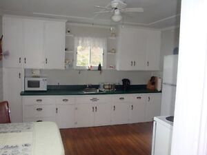 3 Bdrm house in Chapel Arm, close to Long Harbour St. John's Newfoundland image 5