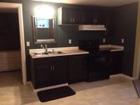 2 bed basement suite Sylvan Lake - available immediately