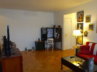 Amazing and affordable Parkdale apartment