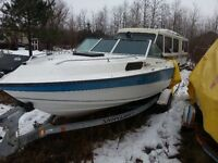 22ft  boat with trailer