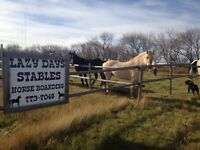 Horse Boarding and Horse Lease