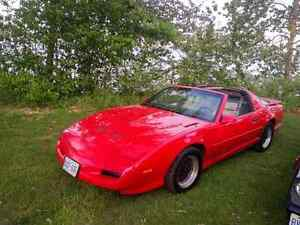 91 firebird trans am